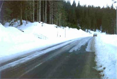 forest-road free of snow